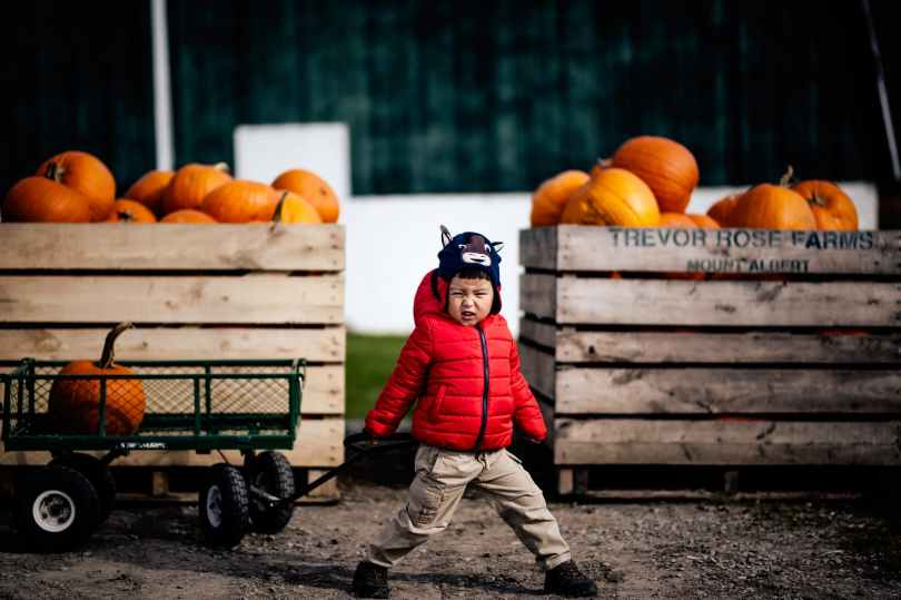 boy standing in front of crates filled with pumpkins