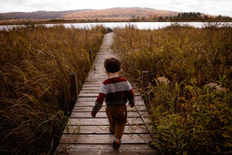 boy walking on wooden pathway beside plants during day