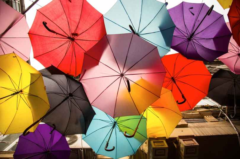 assorted color umbrellas